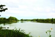 Sông mở nước ôm tôi vào dạ