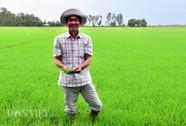 Anh nông dân có biệt tài nhìn trời đoán bệnh lúa