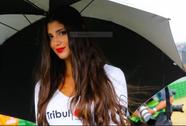 """Những """"chân dài"""" trên đường đua mô tô San Marino 2017"""