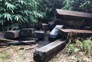 Vụ gỗ trái phép vứt đầy đường biên: Đốt gỗ tang vật để phi tang