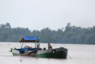 Thủ tướng yêu cầu làm rõ giá cát tăng trên Báo Người Lao Động