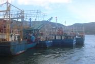 """Đơn vị cung cấp """"máy đểu"""" xin thay máy mới cho ngư dân"""