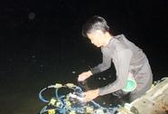Đêm theo thợ lặn thỏa sức săn tôm cá ở Đồng Nai