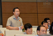 Đại biểu Lưu Bình Nhưỡng trải lòng về phát biểu tại nghị trường