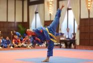 Dấu ấn võ Việt năm Bính Thân