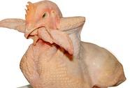Nhờ báo chí lên tiếng, 4 người đánh bài ăn thịt gà 'thoát nạn'