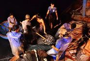 """Bí kíp dụ cá có """"1 không 2"""" của 1 ngư dân Quảng Ngãi"""