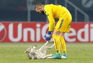 Chó làm gián đoạn trận đấu ở Europa League
