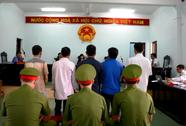 Vụ cưa cây khô bị xử tội trộm cắp: Mời 2 phóng viên ra khỏi phòng xử