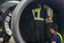 Bà cụ ném đồng xu vào động cơ máy bay không bị phạt