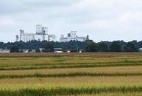 Mỹ lần đầu xuất gạo sang Trung Quốc