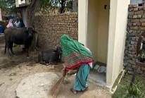 Ấn Độ: Ly dị vì chồng không xây nhà vệ sinh