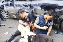 Đánh chết người trộm chó: Không mới nhưng lạ!
