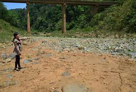 Sông Đồng Nai kêu cứu: Xóa bỏ nạn cát cứ