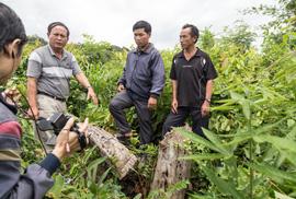 Gán cho lương dân tội phá rừng!