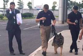 Chó nghiệp vụ theo bảo vệ Tổng thống Obama mang hàm Đại úy