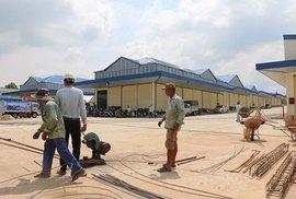 Mở cửa chợ đầu mối lớn nhất Đồng Nai