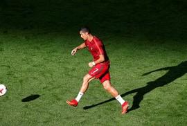 """Gấu """"tiên tri"""" báo điềm xấu cho Ronaldo và đồng đội"""