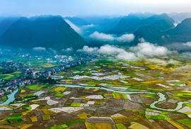 Thung lũng Bắc Sơn nhuộm vàng mùa lúa chín