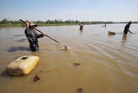 Tuyệt kỹ săn lươn ở Quảng Nam