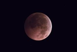 """Thú vị hiện tượng """"mặt trăng hồng"""""""