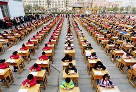 """""""Mẹ hổ"""" Trung Quốc phát điên vì """"cày"""" bài tập về nhà của con"""