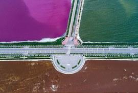 """""""Biển chết Trung Quốc"""" hóa nửa hồng, nửa xanh"""