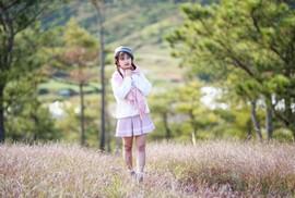Ma mị cỏ hồng trong sương sớm Đà Lạt