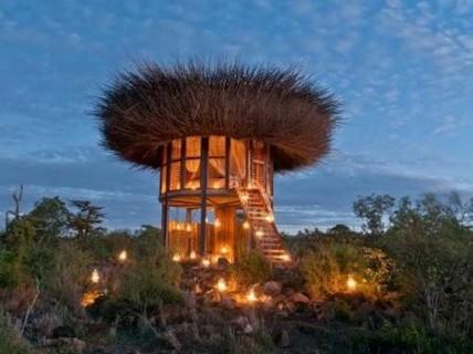 Phòng khách sạn 'tổ chim' 5 sao đầu tiên trên thế giới