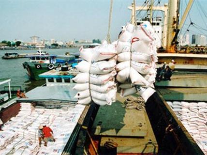 Xuất khẩu gạo có thể rơi vào khủng hoảng