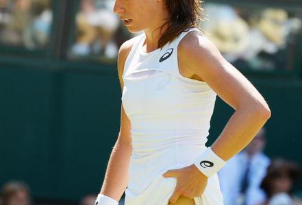 Wimbledon khổ vì kiến cánh