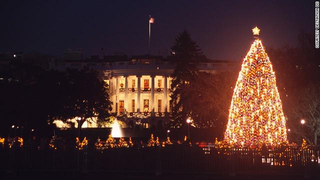 Cây thông Noel bên ngoài Nhà Trắng. Ảnh: CNN