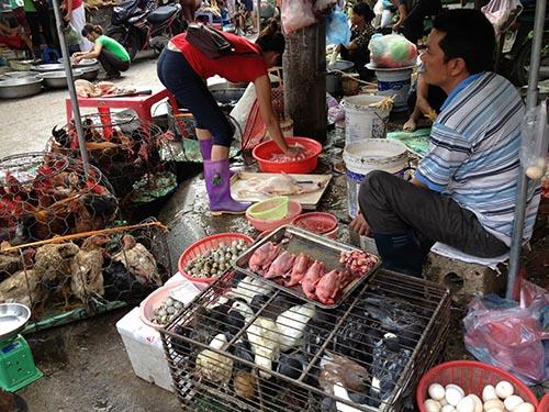 Gia cầm được bán và giết mổ công khai tại các chợ gần khu vực dân cư sinh sống  Ảnh: NGỌC DUNG