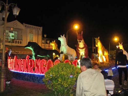 Biểu tượng của năm Giáp Ngọ được người dân Bạc Liêu vô cùng thích thú