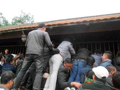 Dẫm đạp, leo trèo lên nhau trong lễ khai ấn đền Trần năm 2013. Ảnh: Văn Duẩn