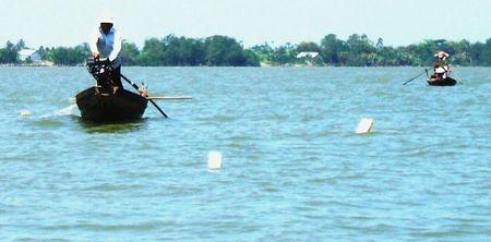 Săn cá bông lau ở cù lao triệu phú