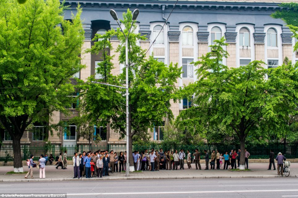 Get to work: Commuters in Pyongyang wait in a long line in order to catch the bus to and from work in the city centre on the countrys poor public transport system