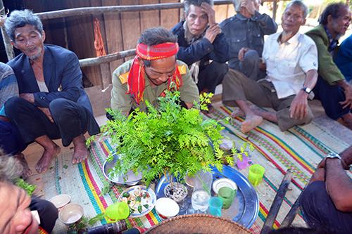 Già làng đang dùng lá cỏ đá để cúng phép cầu sức khỏe cho dân làng. Ảnh: VÕ LÊ