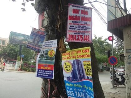Nơi ngã tư đường đèn xanh đèn đỏ là vị trí đắc địa. Ai cũng muốn bon chen nên gốc cây được tận dụng không còn chỗ trống