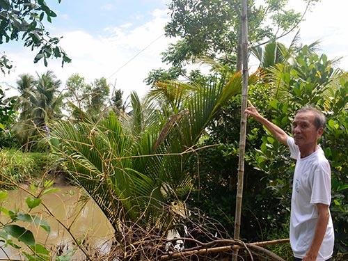 Nhiều hộ dân ở xã Đông Phước, huyện Châu Thành, tỉnh Hậu Giang phải kéo nhờ điện để sử dụng