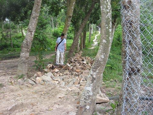 Lối mòn xuyên qua khu vườn đang bị tranh chấp