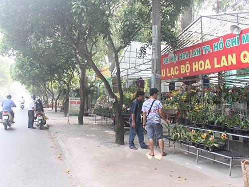 Toàn bộ mặt tiền Công viên Phú Lâm, phía đường Lê Tùng Mậu, đã bị cho thuê bán hoa kiểng