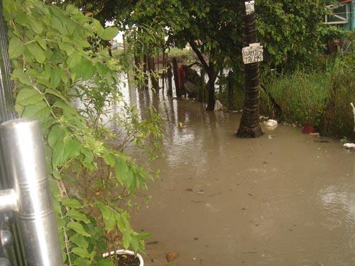 Con hẻm ngập nước không lối thoát sau cơn mưa