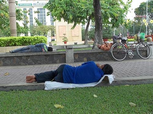 Vô tư ngủ ở... công viên