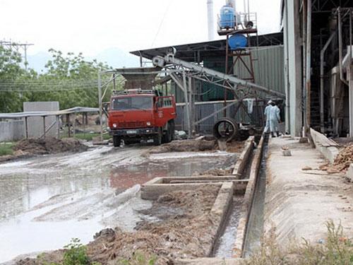 Nhà máy Chế biến tinh bột mì Ninh Thuận từng bị xử phạt hàng trăm triệu đồng vì gây ô nhiễm môi trường