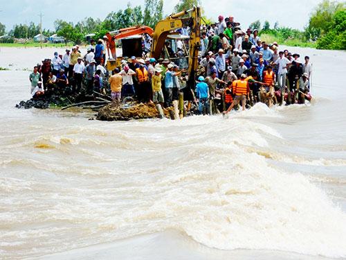 Vỡ đê bao ở xã Vĩnh Châu, TP Châu Đốc, tỉnh An Giang vào năm 2011 làm mất trắng hàng trăm hecta lúa vụ ba của nông dân