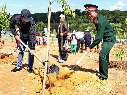 Những loại cây đặc trưng của TP Đà Lạt được trồng trong đợt này