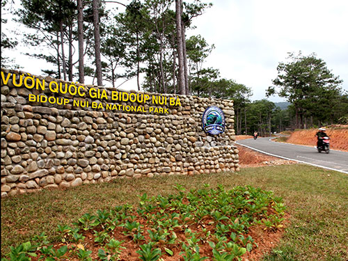 Vườn Quốc gia Bidoup Núi BàẢnh: Phù Dung