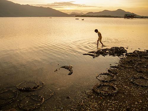 Việc nuôi hàu làm xấu vịnh Lăng Cô vẫn chưa được xử lý dứt điểm Ảnh: Quang Trầm