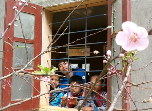 Các em nhỏ ở trường phổ thông cao sơn thích thủ ngắm hoa đào nở bên song cửa sổ.